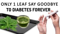 Only 1 Leaf To Cure Diabetes Permanently   Say Goodbye To Diabetes   Health Tips