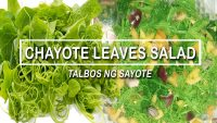 CHAYOTE LEAVES SALAD || TALBOS NG SAYOTE RECIPE || VEGETARIAN FOOD || HEALTHY FOOD || Jayden's Trip